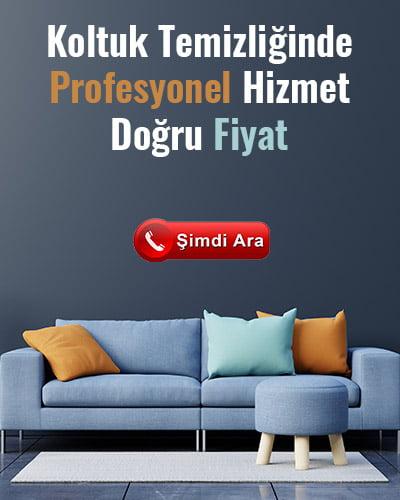 www.vitrintemizlik.com